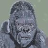 seanbourman's avatar
