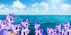Seaswirl-Spotlight