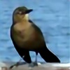 Seawren's avatar