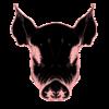 SebastianDuke's avatar