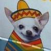 SebastianVice's avatar
