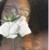 seetheworldasitis's avatar