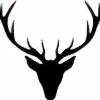 selesnya's avatar