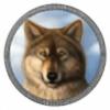 selim13's avatar