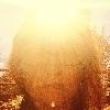 semraturkmen's avatar