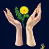 SereneRiver's avatar