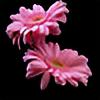 Seydanur40's avatar