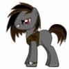 sgdfan53's avatar