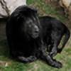 Shabshir's avatar