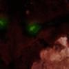 Shade-of-the-Night's avatar