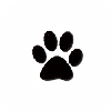Shadow--wolfie's avatar