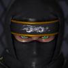 ShadowNinjaMaster's avatar