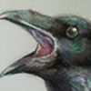 ShainGriphonka's avatar