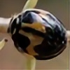 ShamanQueen1994's avatar