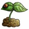 Shanaxox's avatar