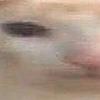 sharkish1124's avatar