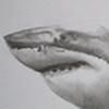 sharky568's avatar