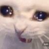 ShatteredSkys0Art's avatar