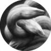 shawnerussell's avatar