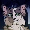 Shedo310's avatar