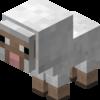 Sheepyalapach's avatar