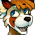 Sheltonee's avatar