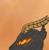 ShelyxatheSiren's avatar
