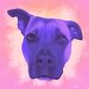 Sheriaa's avatar