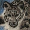 Sherval's avatar