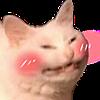 Shiba17's avatar