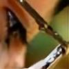 shieldwolf123's avatar