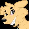 Shifty-Bentley-Boy20's avatar