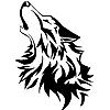 Shikkra's avatar