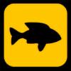 shinnyxr's avatar
