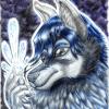 ShiverWolf150's avatar