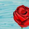 ShreenidhiR's avatar