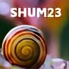 Shum23's avatar