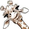 shurkin's avatar