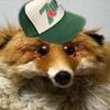 shyby11's avatar