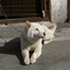 si2098's avatar