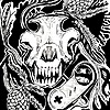 Sighter's avatar