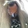 sikness's avatar