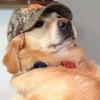 Silence-Doogood's avatar