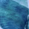 silence0903's avatar