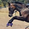 silhouette-equus's avatar