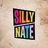 SillyNate's avatar