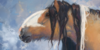 Silvaester's avatar
