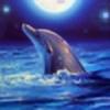 silvaze86's avatar