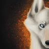 SilverDoodles1's avatar