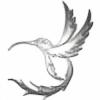 SilverHummingbird's avatar